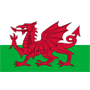 Wales League Division 1 Logo